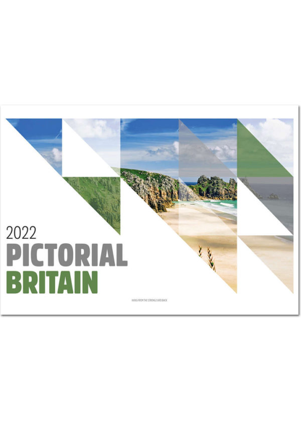 c19ps cover 2022