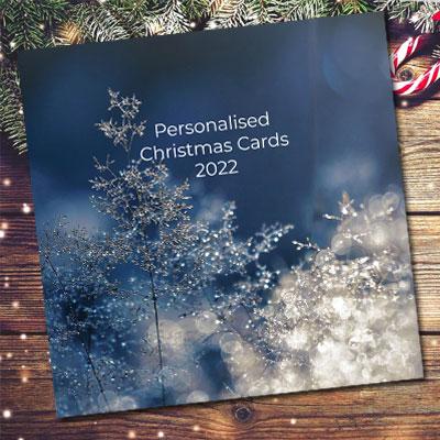 christmas card brochure