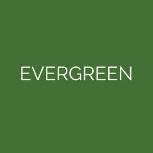 laser cut evergreen