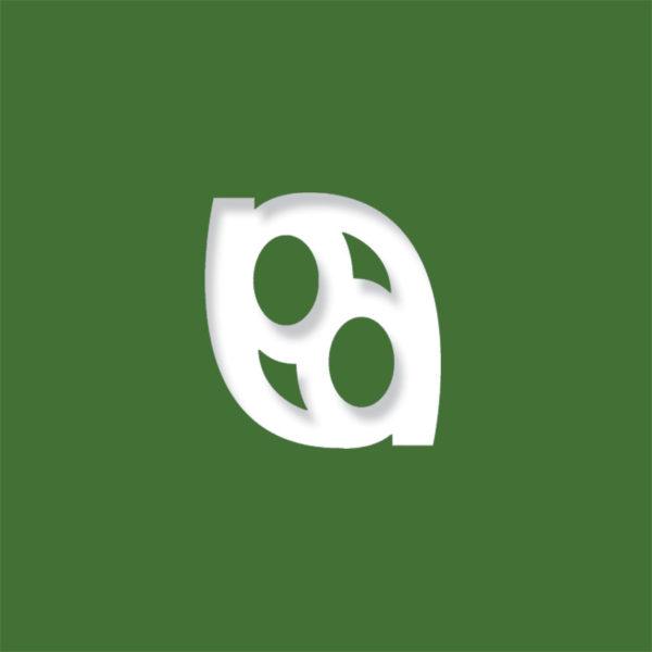 laser logo evergreen
