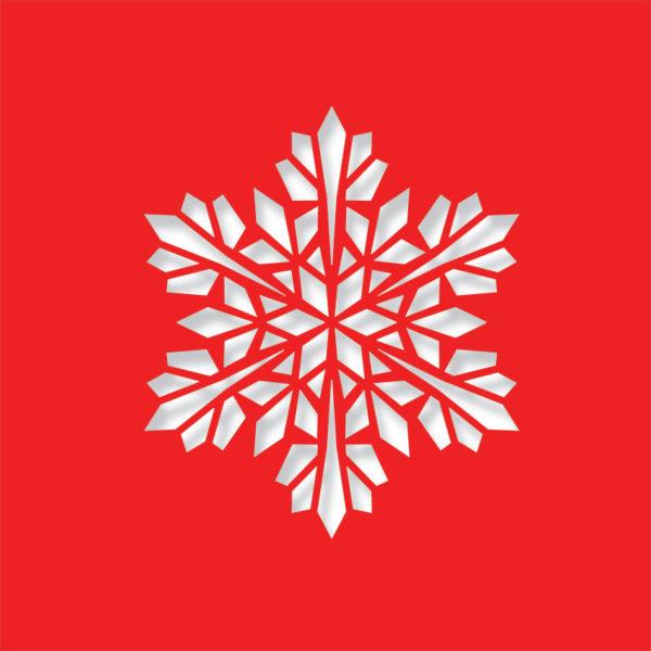 modern snowflake chilli