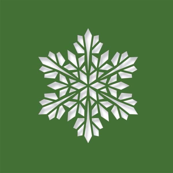 modern snowflake evergreen