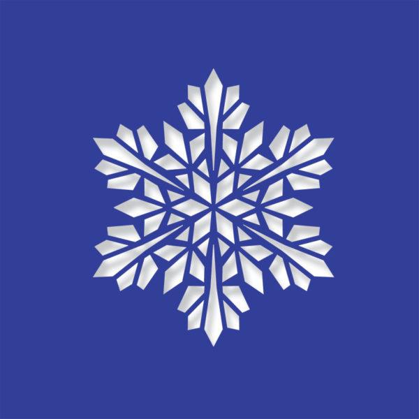modern snowflake midnight